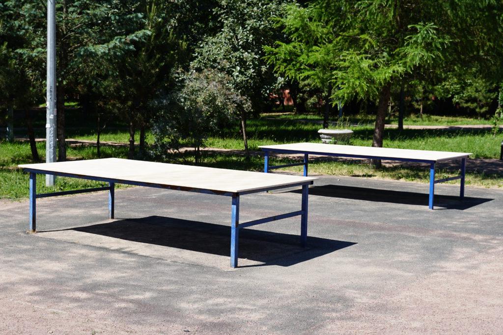 Два теннисных стола на фоне зеленых деревьев
