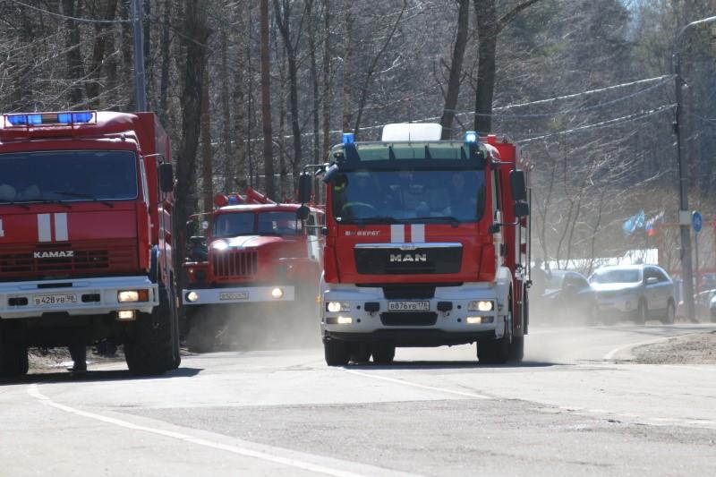 Фото группы пожарных автомобилей